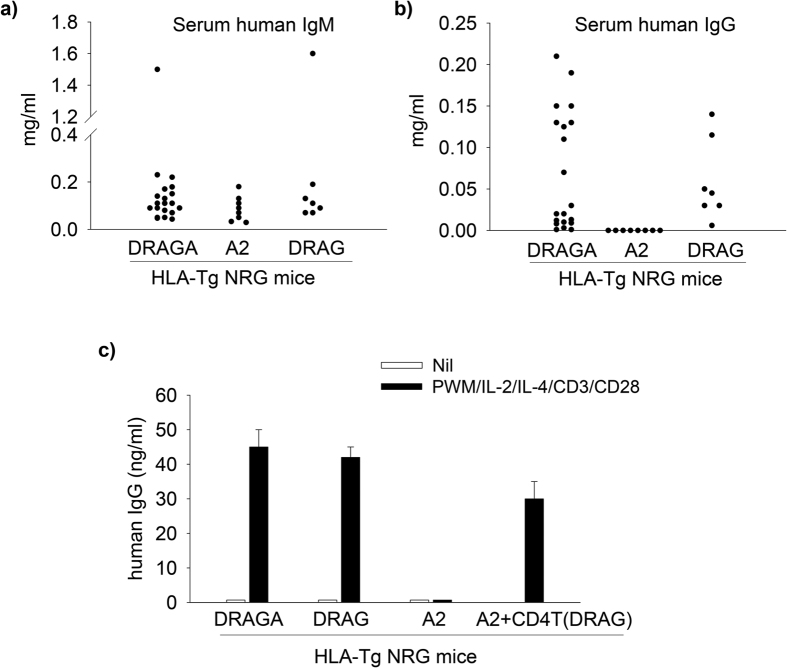 HLA-DR4, but not HLA-A2 expression on NRG mice supports B cell immunoglobulin class switching and secretion of <t>IgG.</t> Panel ( a,b ) At 16–18 weeks post-infusion of human HSCs, DRAGA, DRAG, and A2 mice were examined for serum levels of human IgM ( a ) and human IgG ( b ) by <t>ELISA.</t> Data show values in individual mice. Panel ( c ) splenic cells from DRAGA, DRAG, and A2 mice (n = 3 mice pooled) were stimulated in vitro with PWM plus human IL-2, IL-4 and human CD3/CD28 Abs for 16 days and the levels of human IgG secreted in cell culture supernatants were measured by ELISA. Splenic cells from A2 mice were also stimulated as above in the presence of purified CD4 T cells from DRAG mice. All mice used in this experiment were infused with HSC from the same donor. Data show mean ± SD.