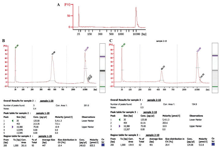 Agilent 2100 Bioanalyzer system analyzed data from samples of one patient (prior and subsequent to treatment). (A) Blank control. Size distribution was measured and polymerase chain reaction product quality was tested with Agilent 2100 Bioanalyzer analysis (B) prior to and (C) following treatment.