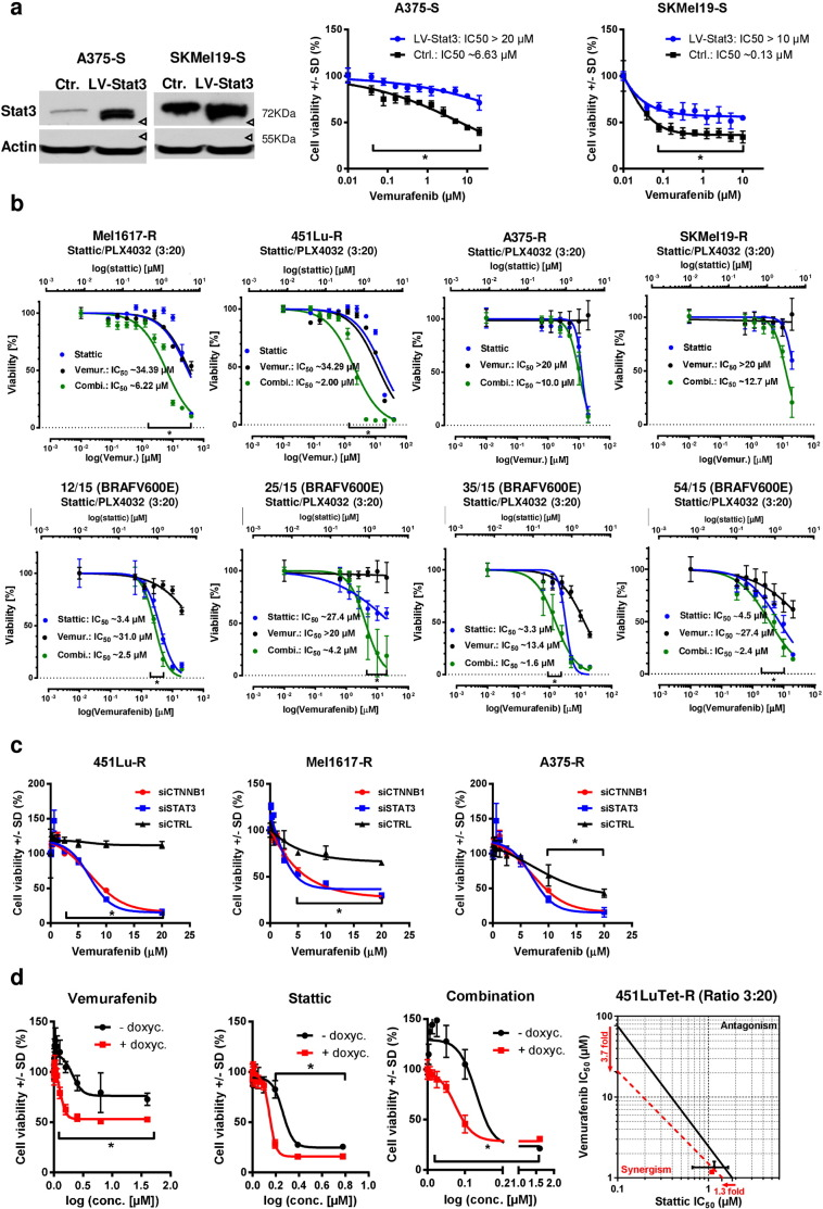 Stat3 and β-catenin levels cooperatively mediate resistance to BRAFi in melanoma cells. a) Stat3 was overexpressed in sensitive A375 and SKMel19 cells using a lentivirus (LV-STAT3). After selection the stable overexpression was tested by western blot and the cells were used for cell viability testings (MUH) after 72 h of treatment with vemurafenib. Signals were normalized to the control cells without vemurafenib treatment. Mean +/− SD values of six replicates are shown. Multiple t-tests with Holm–Šídák correction were used to compare data points of the two curves and p
