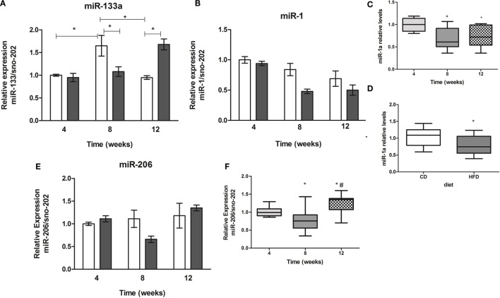 Time-course of muscle-specific microRNAs miR-133a (A), miR-1a (B), and miR-206 (E) expression in soleus muscle of high-fat diet (HFD) and control diet (CD)-fed mice . Total RNA was extracted from soleus muscle of HFD- and CD-fed mice, and 10 ng was used for stem-loop reverse transcription. RT products were used for TaqMan real-time PCR. SnoRNA-202 was used for normalization. * p