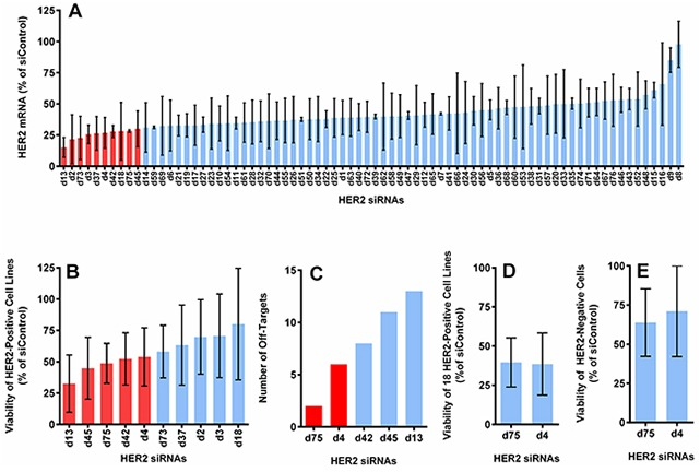 Selection of optimal HER2 siRNA sequences based on the level of HER2 mRNA knockdown, cell viability reduction, number of off-targets and specificity A. The average expression of HER2 mRNA in 3 HER2-positive cell lines (BT474, SKBR3 and HCC1954), measured by QuantiGene assay at 5 days <t>post-transfection</t> (normalized to actin and reported as the percentage of the average of 4 control siRNAs). B. The cell viability reduction induced by the top 10 candidates from (A), measured with CellTiter-Glo assay at 5 days post-transfection. Graph shows the average value from 5 HER2-positive cell lines (BT474, SKBR3, HCC1954, HCC1569, and JIMT1). C. The number of off-targets found through BLAST for the top 5 sequences from (B). D. Cell viability reduction induced by the best 2 sequences from (C) in 18 HER2-positive cell lines (see Supplementary Figure S1 ). E. Cell viability reduction induced by the best 2 sequences in 2 HER2-negative cell lines (T47D and MCF10A). All with 10 nM of siRNA delivered with <t>DharmaFECT-1.</t>