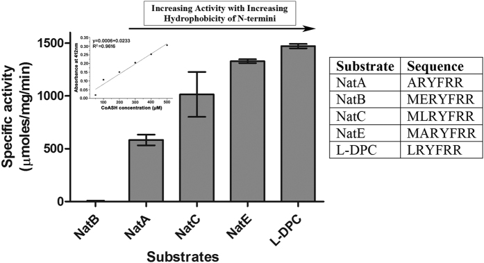 Determination of specific activity of RimI Mtb towards peptide substrates using DTNB assay. The amount of product (CoASH) generated as a result of acetyl transfer was monitored at 412 nm. The concentration of the product was quantified using CoASH calibration curve (inset) and specific activity of RimI Mtb against each substrate plotted in terms of μmoles/mg/min. The results shown here represent mean ± SD of experiments performed in triplicate.