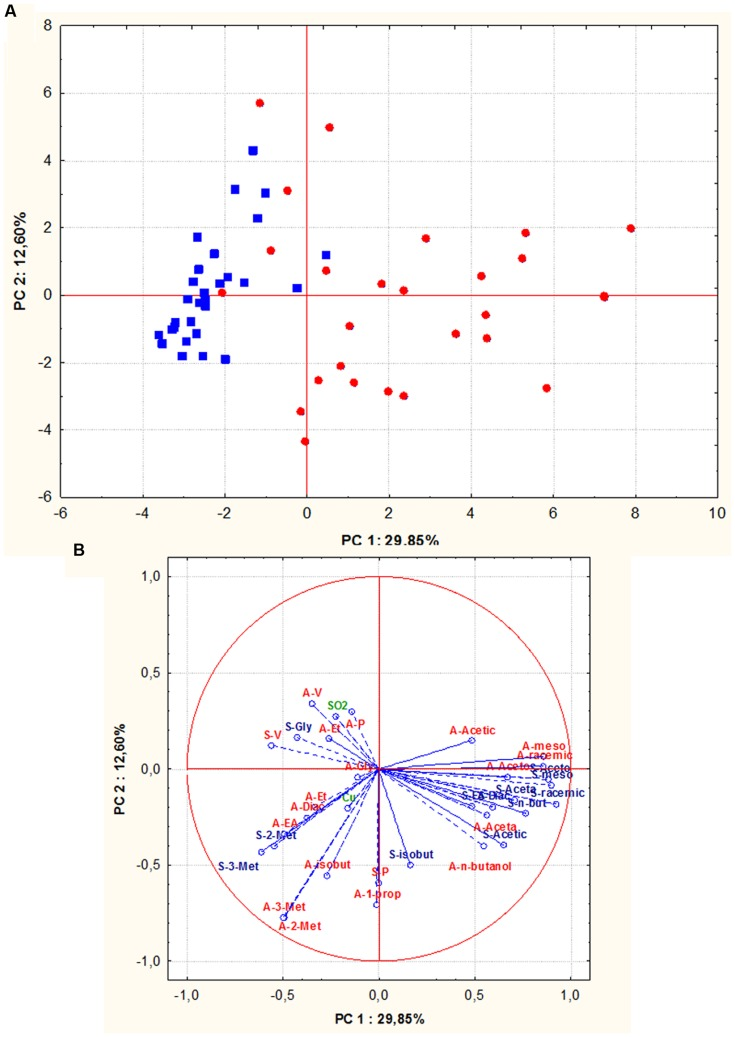 """Principal component analysis (PCA) of oenological properties (resistance to SO 2 and copper, fermentative vigor and power, by-products of alcoholic fermentation) of S. cerevisiae isolates (red circle = isolates from Aglianico del Vulture, blue square = isolates from Sangiovese), the scores (A) and variable loadings (B) for the two first principal components. Abbreviations for chemical measures in loadings are: red """"A"""" refers to Aglianico del Vulture, blu """"S"""" refers to Sangiovese, V, fermentative vigor; P, fermentative power; SO 2 , SO 2 resistance; Cu, copper resistance; Et, ethanol; Acetic, acetic acid; meso, meso 2,3 butanediol; racemic, racemic 2,3 butanediol; Gly, glycerol; Aceta, acetaldehyde; Diac, diacetyl; Aceto, acetoin; EA, ethyl acetate; 3-met, 3- methyl 2 butanol; 2-met, 2- methyl 2 butanol; n -butanol, normal butanol; isobut, isobutanol; 1-prop, 1-propanol."""