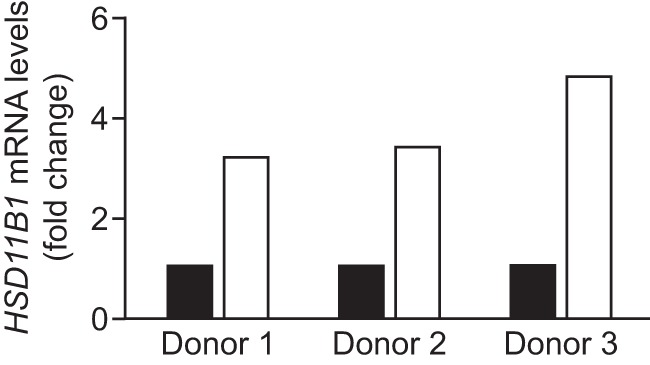 HSD11B1 mRNA is up-regulated in activated human neutrophils. Human neutrophils were isolated from blood of three healthy individuals and treated for 4 hours with 100 ng/mL LPS, prior to RNA extraction and real-time measurement of HSD11B1 mRNA levels. Values are normalized to levels in untreated cells (black bars) and show fold induction of HSD11B1 mRNA after LPS (white bars) for single individuals.