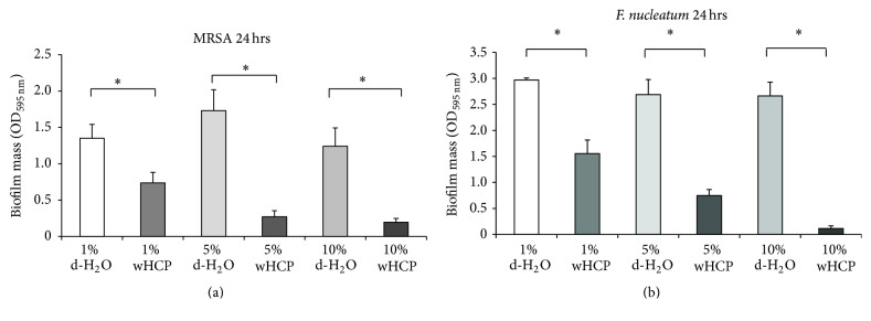 Antibiofilm effects of water solution of Houttuynia cordata poultice ethanol extract (wHCP) on 24 h biofilm formations by MRSA T31 (a). Antibiofilm effects of water solution of Houttuynia cordata poultice ethanol extract (wHCP) on 24 h biofilm formations by F. nucleatum (b). Distilled H 2 O (1%, 5%, or 10%) was used as a negative control. ∗ Significant differences between the indicated groups at P