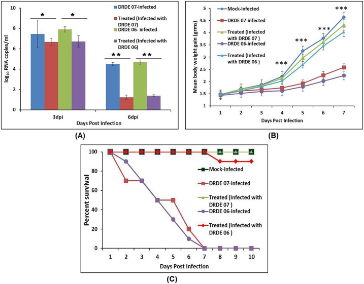 In vivo virus neutralization activity of mice sera immunized with CHIK-VLPs. (A) Percentage survival of the all the mice groups. CHIKV infected mice showed 100% mortality whereas treated mice (infected with DRDE 07) that received CHIK-VLPs IgG and then infected with CHIKV showed 100% survival rate same as mock infected mice that neither infected with CHIKV nor received specific IgG. However, treated mice (infected with DRDE 06), showed 90% survival. (B) Body weight gain measured on 1–7 day of post infection. Treated mice group (infected with DRDE 07 or DRDE 06) showed significantly higher (***P