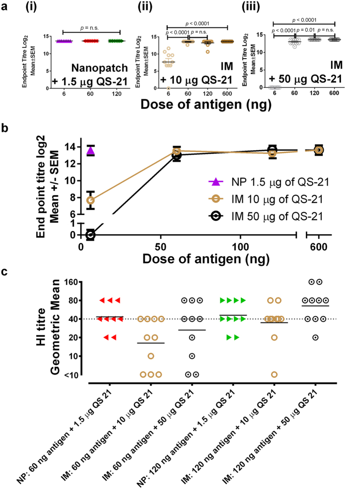 Total serum antigen specific IgG response comparing QS-21 dose 21 days post immunisation at 1.5 μg delivered by Nanopatch, or 10 μg or 50 μg delivered by the needle and syringe intramuscular (IM) route. Nanopatch groups were represented by (6 ng , 60 ng and 120 ng of influenza antigen) ; IM groups were represented by (10 μg or 50 μg of QS-21 ) with different dose of influenza antigen (6 ng, 60 ng, 120 ng and 600 ng). ( a ) Antigen specific endpoint titres of (i) Nanopatch induced response by 6 ng, 60 ng or 120 ng of influenza antigen without QS-21, (ii) IM induced response by 10 μg of QS-21 with different dose of influenza antigen (6 ng, 60 ng, 120 ng and 600 ng, (iii) IM induced response by 50 μg of QS-21 with different dose of influenza antigen (6 ng, 60 ng, 120 ng and 600 ng; ( b ) Nanopatch and IM induce antigen specific IgG from different dose of QS-21 (1.5 μg, 10 μg and 50 μg) and ( c ) Haemagglutination Inhibition (HI) titres of one of the influenza strain A/Victoria/361/2011 (H3N2) from Nanopatch and IM at 60 ng and 120 ng of antigen with 1.5 μg, 10 μg and 50 μg of QS-21. ELISA antibody data represent the Mean ± SEM, statistical significance is when p