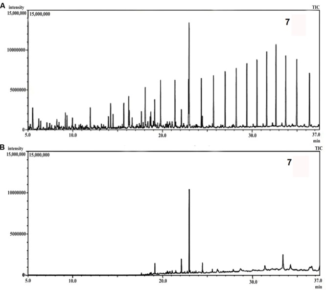(A) Gas chromatography-mass spectrometer (GCMS) chromatograph of abiotic control. (B) GCMS chromatograph of crude oil treated for 5 weeks with consortium 10.