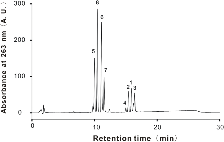 HPLC chromatogram of KPE for determination of PMFs. PMFs in KPE were separated on a Develosil RPAQUEOUS-AR-5 column. The chromatographic mobile phase consisted of A (acetonitrile: water: acetic acid = 35: 62.5: 2.5, v/v) and B (acetonitrile: acetic acid = 97.5: 2.5, v/v). The gradient program was set as 0–20 min (solvent A: 99–1%). Use of 263 nm as a selective wavelength allowed identification of the 8 known PMFs. Peak 1 , 5-hydroxy-3,7-dimethoxyflavone; 2 , 5-hydroxy-7-methoxyflavone; 3 , 5-hydroxy-3,7,4'-trimethoxyflavone; 4 , 5-hydroxy-3,7,3',4'-tetramethoxyflavone; 5 , 3,5,7,3',4'-pentamethoxyflavone; 6 , 5,7,4'-trimethoxyflavone; 7 , 3,5,7,4'-tetramethoxyflavone; 8 , 5,7-dimethoxyflavone.