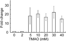 The frmRAB operon is induced after exposure of E . coli MG 1655 to concentrations of TMAO ≥ 5 m M . Anaerobic batch cultures were exposed to different concentrations (0–40 m M ) of TMAO . After 30 min, total RNA was isolated for <t>qRT‐PCR</t> of the frmR mRNA . The data shown and the mean and standard deviation for the fold increase relative to the 0 m M TMAO culture and are typical of <t>three</t> independent experiments.
