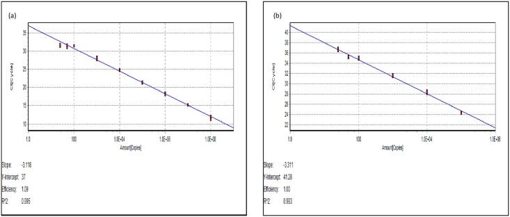 RT-qPCR standard curves. Standard curve relating viral copy number to Ct value from RT-Polymerase chain reaction using 10-fold dilutions of in-vitro transcribed RNA using (a) SYBR ® Green I and (b) TaqMan chemistries.