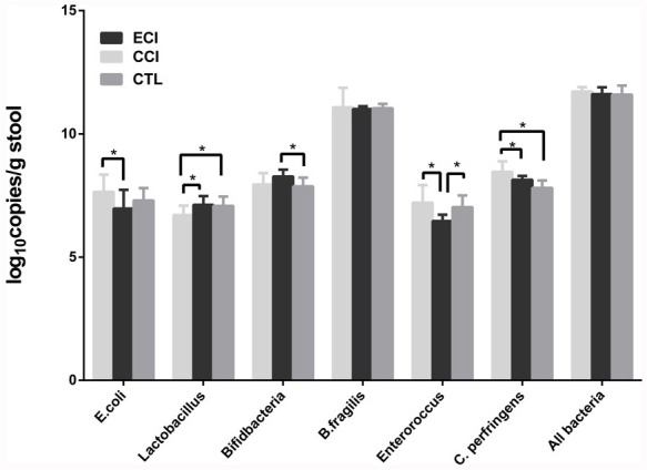 Quantifications of bacteria in the fecal microbiota (log 10 copies/g stool) Real-time qPCR was performed to detect the fecal microbiota 4 weeks after CCI or ECI treatments following the 5/6 nephrectomy. Data are presented as Mean ± SD, * p