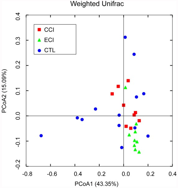Weighted Unifrac PCoA analysis of gut microbiota based on the OTU data from pyrosequencing run A point represents a sample from each group. The sample numbers (n) in each group: CTL = 13, CCI = 9, and ECI = 9.