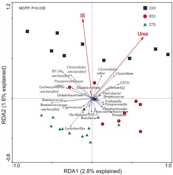 Biplot of redundancy analysis (RDA) of the gut microbiota compositions after ECI treatments in CKD rats The uremic toxins of Urea and IS were used as environmental variables. On Top-left, P -value was obtained by Monte Carlo permutation procedure (MCPP).