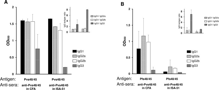 Analysis of antibody isotypes. Anti-Pvs48/45 sera showing positive reactivity to Pfs48/45 in ELISA and Western blotting (4 out of 5 from CFA group and 2 out of 5 from Montanide ISA-51 group) were individually tested to compare immunoglobulin isotypes. ELISA plates coated with Pvs48/45 (panel A) or Pfs48/45 (panel B) were incubated with sera (1:10,000 dilution for Fig 3A and 1:100 dilution for Fig 3B). The plates were then incubated with peroxidase-conjugated goat anti-mouse IgG1, IgG2a, IgG2b and IgG3 (1:2,500 dilution) and processed as in standard ELISA. Shown are mean absorbance values for each isotype and the insets in panels A and B show relative proportions of IgG2a, IgG2b and IgG3 isotypes compared to IgG1. The error bars indicate SD.