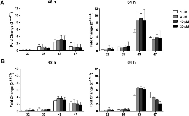 miR-122 release. (A) Mouse hepatocyte-NPC co-cultures or (B) hepatocyte monocultures were treated with the respective SSOs for 48 or 64 hours and cell-free supernatant was collected. The levels of miR-122 at 48 h and 64 h were assessed using real-time qPCR. miRNA levels were normalized to vehicle treated cells. Data are means ± SD.