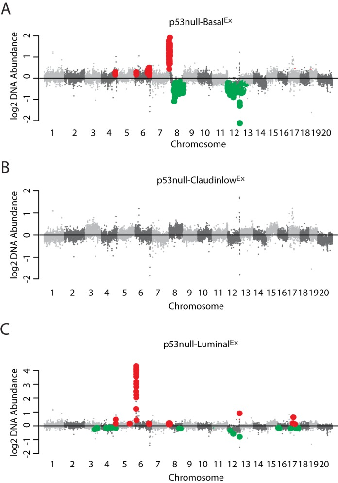 DNA copy-number analysis. Displayed in genomic order are the median class DNA copy-number levels for (A) p53null-Basal Ex , (B) p53null-Claudin-low Ex and (C) p53null-Luminal Ex tumors. DNA copy-number changes enriched within each of the three Trp53 -null transplant classes were identified using a two-class (class x versus all others) SAM analysis. Genomic regions of significant gain are labeled in red and regions of significant loss are labeled in green.