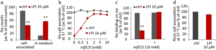 LPI releases prebound Stx; the inhibitory effect of LPI on Stx binding is reversed by mβCD; LPI has almost no inhibitory effect on binding of ricin. (a) HEp-2 cells were incubated with 125 I-Stx1m on ice for 30 min, washed and treated with 10 μM LPI for 20 min at 37 °C. Cell medium was collected, cells were lysed and the radioactivity signal was counted. The quantification of 125 I-Stx1m counts is expressed as % of total counts (mean ± SEM; n = 3). (b) Cells were pretreated with 10 μM LPI for 30 min and then increasing concentrations of mβCD were added and treatment continued for 15 min. Cells were then incubated with 125 I-Stx1m for 20 min at 37 °C and cell-associated 125 I-Stx1m was counted, quantification results presented as % of control (mean ± SEM; n = 3). (c) Cells were pretreated with 10 μM LPI for 30 min and then 10 mM mβCD was added and treatment continued for 15 min. Cells were then incubated with 125 I-Stx1m for 20 min on ice and cell bound 125 I-Stx1m was counted, quantification results presented as % of control (mean ± SEM; n = 3). (d) Cells were pretreated with 10 μM LPI for 30 min at 37 °C, prior to incubation with 125 I-ricin (20 min 37 °C). After the treatment, cells were washed, lysed and the radioactive signal was measured. Quantification data are presented as % of control (mean ± SEM; n = 6).