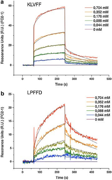 Interaction of KLVFF ( a ) and LPFFD ( b ) peptides at several concentrations with Aβ(1–42) fibrils measured by SPR. The sensorgrams obtained ( colored curves ) were fitted thanks to the Biaevaluation ® software with the Langmuir 1:1 model ( black curves )