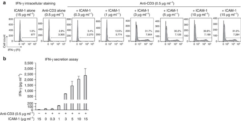 More LFA-1/ICAM-1 interactions are required for IFN-γ secretion than for IFN-γ intracellular production. Blood CD8 T cells from non-cancerous donor LB3442 were plated in wells coated with an anti-CD3 mAb (0.5μgml −1 ) and increasing doses of human ICAM-1-Fc. Taking in account this strong stimulus, IFN-γ secretion and production were estimated 3h after stimulation. ( a ) After stimulation in the presence of brefeldin A, cells were stained for intracellular IFN-γ. ( b ) IFN-γ secretion was measured by enzyme-linked immunosorbent assay (ELISA). Columns are mean±s.d. of duplicates. Results are from one representative experiment out of four.