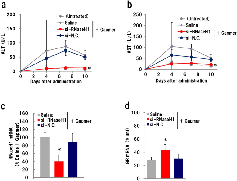 Effect of RNaseH1 knockdown for GR gapmer-derived hepatotoxicity. Mice were administrated an siRNA–invivofectamine complex 2 days prior to s . c . injection of 10 mg/kg gapmer. Plasma was collected 4, 7 and 10 days later, and mouse liver was isolated on day 10. ( a ) Plasma ALT level; ( b ) plasma AST level; ( c ) Expression level of RnaseH1 and ( d ) GR mRNA in liver (n = 4, mean ± S.D., * p