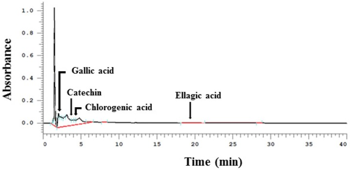 Representative <t>HPLC</t> chromatograms of phenolic <t>bioactive</t> compounds in walnut phenolic extract WPE. WPE was prepared from whole walnuts and its phenolic bioactive compounds, including gallic acid, (+)-catechin, chlorogenic acid, and ellagic, acid were detected by HPLC. WPE; walnut phenolic extract.