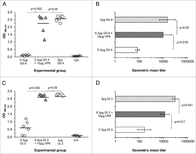 NoV GII.4 (A, B) and GI.3 (C, D) genotype-specific serum IgG antibody responses induced with 0.3 μg or 3 μg of GII.4 or GI.3 VLPs alone or with 0.3 μg doses in a combination with 10 μg of RV VP6. Control (Ctrl) mice received carrier (PBS) only. OD 490nm values of GII.4- (A) and GI.3-specific (C) antibodies in 1:100 diluted sera of individual mice are shown with the horizontal line representing the mean OD 490nm value of the experimental group. GII.4- (B) and GI.3-specific (D) end-point titers of the groups of mice expressed as the geometric mean titers of the reciprocal of the highest sample dilution giving a positive reading. Error bars represent 95% confidence intervals, CIs. Groups were compared by Mann-Whitney U-test or Fisher's exact test and p values determined.