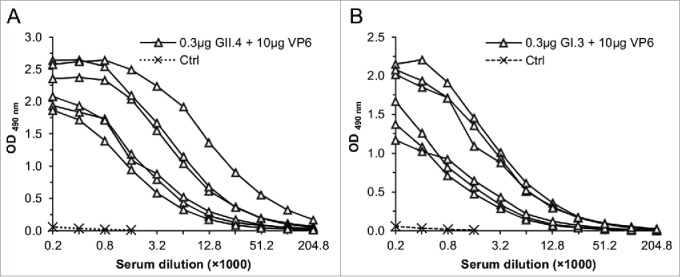 RV VP6-specific IgG antibody responses in sera of mice immunized with 0.3 μg of GII.4 (A) or GI.3 (B) VLPs in a combination with 10 μg VP6. End-point titration curves of each immunized mice and mean curve of the control (Ctrl) mice are shown.