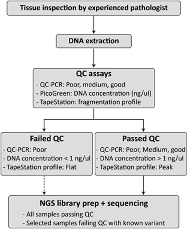 Flowchart of FFPE DNA sample and QC assays. After DNA extraction, three QC assays were performed to validate the quality of the DNA: (1) QC-PCR was used to estimate the level of fragmentation by comparing two PCR products amplified from FFPE DNA with the amplified PCR products from HapMap DNA (NA12878). According to the results of the QC-PCR, samples were classified as good, medium or poor. (2) DNA concentrations were measured using a PicoGreen assay. (3) All DNA samples were analyzed on a TapeStation to view the fragmentation profile of the DNA. Either the profiled was rated as 'flat' indicating that DNA was highly degraded or not present, or the profile was rated as 'peak' indicating that the DNA was degrade but had a peak when looking at the electropherogram. If a sample was rated poor, had a DNA concentration less than 1 ng/ μ l and a 'flat' fragmentation profile, the DNA sample had failed QC. Only selected DNA samples failing QC were passed on to library preparation and sequencing, if there was a known variant in the family to search for.