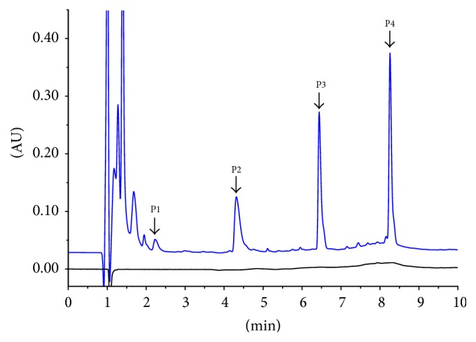 Reversed-phase chromatographic profile of Transferon. Comparison between sample matrix (black line) and batch 15A01 of Transferon (blue line). Chromatographic profile exhibits 4 main peaks with k > 1 and absolute retention time of 2.2 min (P1), 4.3 min (P2), 6.4 min (P3), and 8.2 min (P4). Figure S1 shows that this chromatographic profile is consistent between the 10 analyzed Transferon batches. Transferon samples were analyzed using an <t>Acquity</t> ™ <t>UPLC</t> ™ <t>BEH300</t> <t>C18</t> chromatographic column (2.1 mm × 150 mm) and TFA (0.1%)-H 2 O and TFA (0.1%)-acetonitrile as the mobile phase at 0.4 mL/min using a gradient configuration. The column temperature was maintained at 30°C, and UV detection was performed at 214 nm. Chromatographic profiles were analyzed using Empower ™ (ApexTrack method) to obtain the relative area percentage and absolute retention time for each peak. AU: area units.