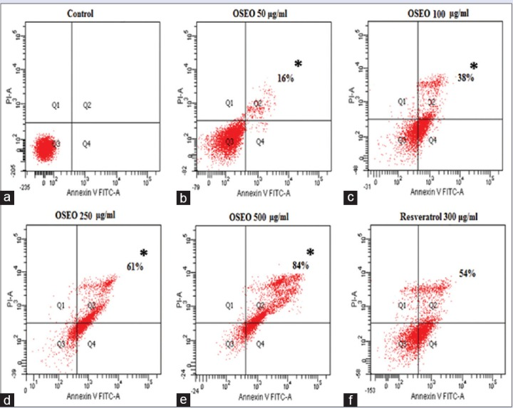(a) The control cells treated with 0.1% DMSO showed no induction of apoptosis. The cells treated with OSEO showed gradual increased in percentage of apoptotic cells at concentration of (b) 50 μg/ml (16%), (c) 100 μg/ml (38%), (d) 250 μg/ml (61%), (e) 500 μg/ml (84%). (f) The resveratrol 300 μg/ml treated cells showed about 54% of apoptotic cells population. OSEO: Ocimum sanctum essential oil; MCF-7: Michigan cancer foundation-7; Annexin V-FITC: <t>Annexin-V-fluorescein</t> <t>isothiocyanate;</t> PI: Propidium iodide