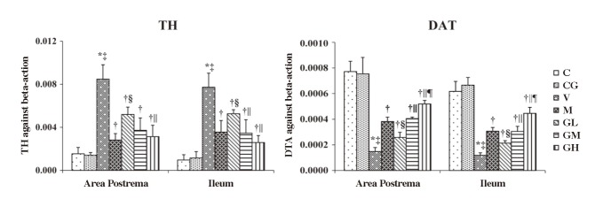 Changes of mRNA expression of TH and DAT in area postrema and ileum. Levels of TH and DAT against beta-actin mRNA expression are shown in the above histogram. The left-side graphs show the expression in area postrema. The right-side graphs show the expression in ileum. C: normal control group, pretreated with sterile saline 3 mL every day ( n = 10); CG: simple gingerol control group, pretreated with gingerol 40 mg·kg −1 i.g. every day ( n = 10); V: cisplatin control group, pretreated with sterile saline 3 mL every day ( n = 10); M: cisplatin + metoclopramide group, pretreated with metoclopramide 2.5 mg·kg −1 i.g. every day ( n = 10); GL: cisplatin + low-dose gingerol group, pretreated with gingerol 10 mg·kg −1 i.g. every day ( n = 10); GM: cisplatin + middle-dose gingerol group, pretreated with gingerol 20 mg·kg −1 i.g. every day ( n = 10); GH: cisplatin + high-dose gingerol group, pretreated with gingerol 40 mg·kg −1 i.g. every day ( n = 10). * P