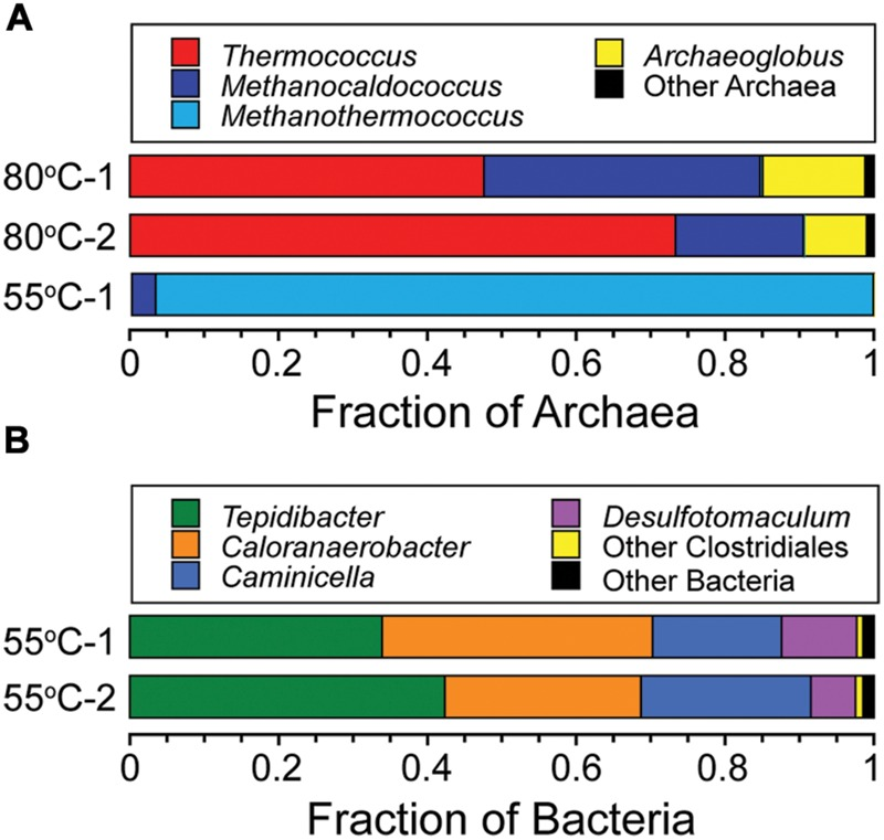 Phylogenetic diversity of Archaea and Bacteria in the 80°C and 55°C microcosms. Taxonomic breakdown and relative abundance at the genus level for archaeal (A) and bacterial (B) 97% 16S rRNA gene OTUs from microcosms following incubation at 80°C and 55°C using diffuse hydrothermal fluids collected from the Marker 113 vent site.