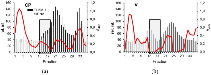 Separation of CP and ssDNA by density gradient centrifugation. Extract pellets either from CP-expressing ( a ) or control cells ( b ) were incubated with ((+)ssDNA) or without ((−)ssDNA) pBlue:CR250 ssDNA, and analyzed in Cs 2 SO 4 gradients by ELISA for CP as described in Figure 2 and by dot blot hybridization for DNA. Relative hybridization signal intensities (rel. int., red lines) are shown after background subtraction on the left y axis, ELISA values on the right axis. Fractions with relevant differences are boxed.