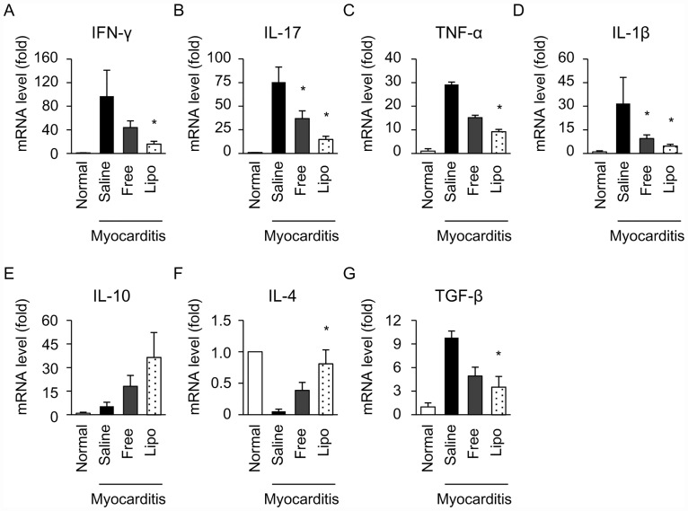 Effects of free and liposomal FK506 on inflammatory cytokines in the hearts of EAM rats. Cytokine expression on day 21 after immunization was evaluated using real-time quantitative PCR. Relative expression of IFN-γ (A), IL-17 (B), TNF-α (C), IL-1β (D), IL-10 (E), IL-4 (F) and TGF-β (G) were normalized to GAPDH (N = 4–9 in each group). Data are expressed as the mean ± SEM. * P