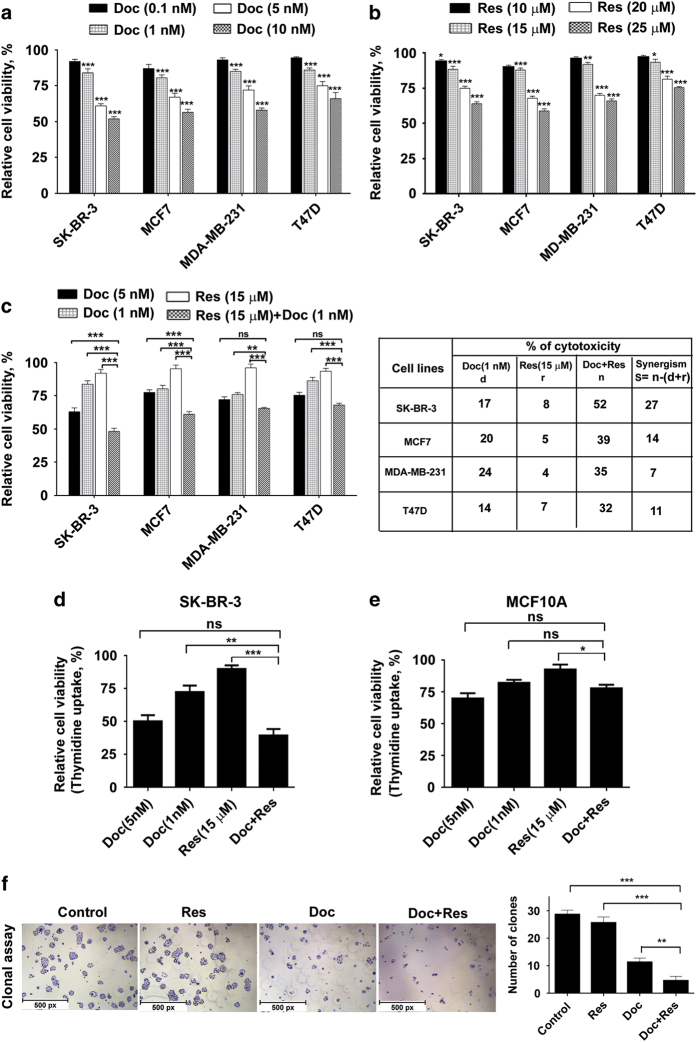 Resveratrol sensitizes breast cancer cells to docetaxel-induced cytotoxicity, while being non-toxic to normal immortalized breast cells. ( a ) Dose-dependent cytotoxicity of docetaxel (0.1–10 nM) on breast cancer cells with varied receptor status. ( b ) Effect of different concentrations of resveratrol (10–25 μ M) on different breast cancer cells. ( c ) Effect of docetaxel (1 nM) and resveratrol (15 μ M), alone or in combination on different breast cancer cells. Cells (5×10 3 ) in triplicates were exposed to the indicated concentrations of the docetaxel for 48 h and subjected to MTT assay. Relative cell viability was determined as percentage absorbance over untreated control. ( d ) Effect of docetaxel and resveratrol, alone or in combination, on SK-BR-3 cells using [ 3 H] thymidine incorporation assay. Cells (5×10 3 ) in triplicates were exposed to the indicated concentrations of the drugs for 24 h and subjected to [ 3 H] thymidine incorporation assay. Relative cell viability was determined as percentage thymidine incorporation over control. ( e ) The combination is non-toxic to MCF10A as assessed by [ 3 H] thymidine incorporation assay. ( f ) Inhibitory effect of docetaxel and resveratrol, alone or in combination, on the clonogenic ability of SK-BR-3 cells (scale bar, 1 μ m/px).