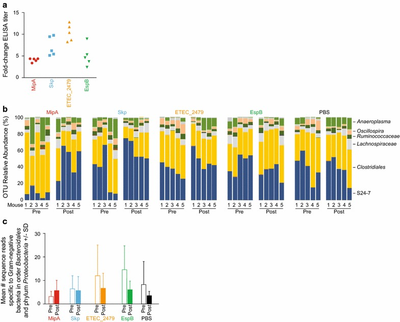 Vaccination with ETEC MipA, Skp, and ETEC_2479. a Serum IgG responses in mice. Data are plotted as the fold-change in serum IgG after immunization with the indicated antigens, n = 5/group. b Bar chart showing relative abundance of all operational taxonomic units (OTUs) detected in the feces of mice prior to (pre) and 6 weeks after (post) vaccination with the indicated antigens, as detected using 16S rRNA amplicon sequencing. The identities of dominant taxa are shown at the right. c Mean number + standard deviation (SD) of sequence reads that were specific to Bacteriodales or Proteobacteria in indicated treatment groups