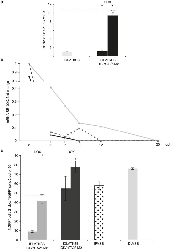 Transcriptionally regulation and transposition mediated by Sleeping Beauty (SB) transposase carried by IDLV vectors. ( a ) qRT-PCR assay on HeLa cells transduced with IDLVTKSB (2,600 ng p24) in presence or in absence of IDLVrtTA2 S -M2 (9,600 ng p24) and dox. Transposase expression upon activation was measured by real time Taqman RT-PCR and plotted as RQ value with respect to the off state (IDLVTKSB alone, RQ value = 1). The experiment was performed in triplicate and is presented the mean ± SEM. Dashed lines connect samples showing significant different values (*** P