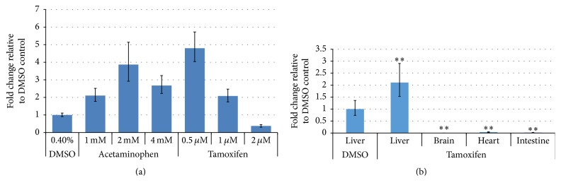 Quantitative expression levels of miRNA-122 in liver toxicant-treated adult zebrafish. (a) Quantitative expression levels of miRNA-122 in tamoxifen- (or acetaminophen-) treated adult zebrafish livers. miRNA-122 expression was upregulated at 0.5 μ M and 1 μ M and downregulated at 2 μ M tamoxifen. miRNA-122 expression was gradually upregulated at 1 mM and 2 mM and decreased at 4 mM acetaminophen. (b) Tissue-specific expression of miRNA-122. miRNA-122 was expressed in the liver of tamoxifen-treated zebrafish, but not in the brain, heart, and intestine at 0.5 μ M. Error bars indicate minimum and maximum values of relative quantification ( ∗∗ p