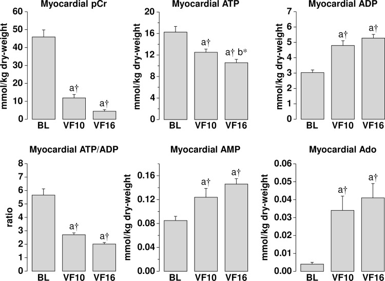 Myocardial measurements at baseline (BL) and during ventricular fibrillation (VF), at 10 and 16 minutes while on low-flow extracorporeal circulation simulating the hemodynamic conditions of closed-chest CPR. pCr, phosphocreatine; ATP, adenosine triphosphate; <t>ADP,</t> adenosine diphosphate; AMP, adenosine <t>monophosphate;</t> Ado, adenosine. Data was analyzed by one-way repeated measures ANOVA and differences shown after Holm-Sidak method for multiple pairwise comparisons. a vs BL, b vs VF10; * p ≤ 0.05, † p ≤ 0.001.