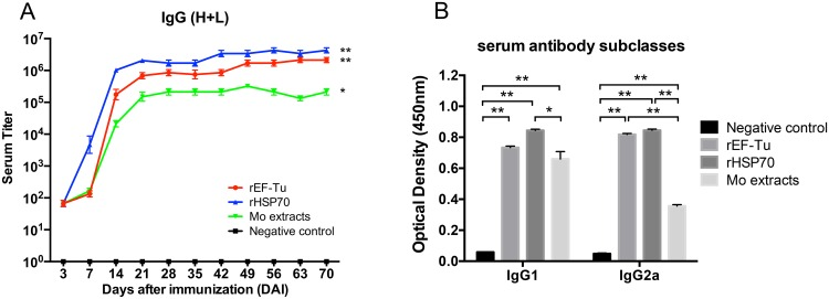 The immunized mouse serum <t>IgG</t> (H+L) titer and IgG subtypes were detected using the indirect ELISA assay. (A) IgG titers of BALB/c mice immunized with rEF-Tu, rHSP70, Mo extracts and PBS sera of each groups were collected on days 3, 7, 14, 21, 28, 35, 42, 49, 56, 63 and 70 DAI. (B) Determination of IgG subtypes in sera of the immunized mice. The sera of each group were collected at 35 DAI. ELISA plates were coated with purified rEF-Tu proteins or rHSP70 proteins or Mo extracts of M . ovipneumoniae wild strain Mo-1 at a concentration of 100 ng per well. Anti-mouse IgG (H+L) or IgG1 or IgG2a <t>HRP-conjugated</t> antibodies were used as secondary antibodies. Asterisks indicates the results of the One-Way ANOVA using the Tukey test, compared with the PBS negative control group, with P