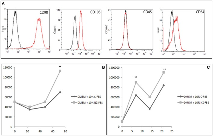 (A) Characterization of DPSCs at the first passage of culture: cytometric analysis of CD90, CD105, CD45, and CD34 markers in DPSCs. Histograms represent the number of cells (y axis) and the fluorescence intensity (x axis) relative to unstained control cells (dot line) and cells marked with specific antibodies against surface proteins (solid line). (B) Growth curve of DPSCs cultured in <t>DMEM</t> + 10% of standard <t>FBS</t> and in DMEM + 10% of New Zealand FBS up to 72 h. (C) Growth performance was studied up to 21 days. ** p
