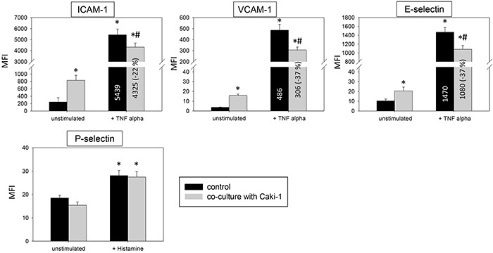 Endothelial surface expression of adhesion receptors in HUVEC after cytokine stimulation and/or co-cultivation with Caki-1 cells Expression of ICAM-1, VCAM-1 and E-selectin after 24h TNF-alpha [500 U/ml] and P-selectin after 10 min histamine [100 μM/ml] stimulation. MFI = mean relative fluorescence intensity. *indicates significant difference to untreated controls. #indicates significant difference to TNF-alpha/histamine stimulated HUVEC. n=5.