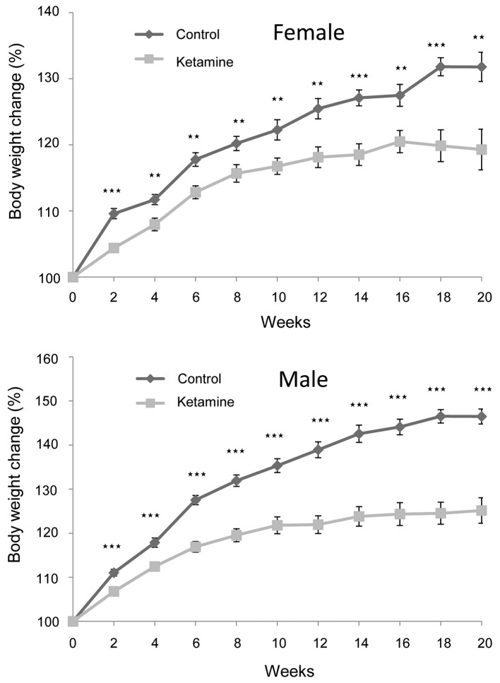 Changes in the body weight of the mice. The weight growth of the ketamine-treated mice was significantly less compared with that of controls after the 2 week treatment. The data are presented by the mean ± standard error of the mean ( ** P