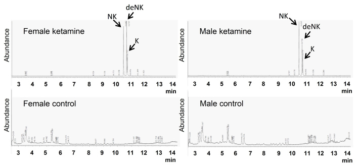 A typical total ion current chromatogram derived from the extracted mice urine. The total run time was 14 min. <t>Ketamine</t> and its metabolites appeared around 10–11 min following the order of NK, deNK and K. No detected level was observed in both male and female control groups. NK, norketamine; deNK, dehydronorketamine; K, ketamine.