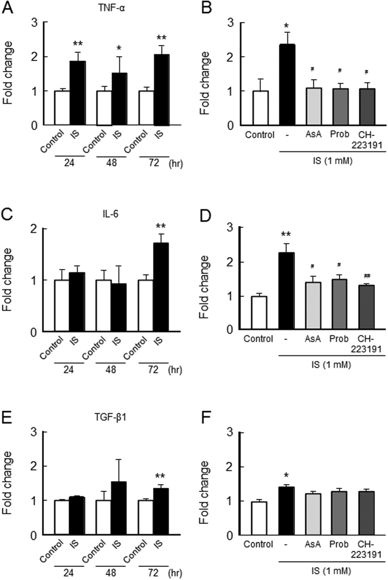 Effect of IS on inflammatory cytokine expression on C2C12 myoblast cells. Effect of IS on inflammatory cytokines expression was determined by real time RT-PCR. C2C12 myoblast cells were starved with serum free medium for 2 hr, and then treated with IS for 24, 48 or 72 hr. After the incubation, total RNA was collected and the mRNA expression of ( A ) TNF-α, ( C ) IL-6 or ( E ) TGF-β1 in C2C12 myoblast cells were determined. To determine the effect of inhibitors, cells were co-incubated in the presence or absence of ascorbic acid (AsA, a ROS scavenger), probenecid (Prob, Oat inhibitor) and CH-223191 (AHR inhibitor) for 72 hr, and the mRNA expression of ( B ) TNF-α ( D ) IL-6 or ( F ) TGF-β1 in C2C12 myoblast cells were determined. Data are expressed the means ± SEM (n = 3~5). * p
