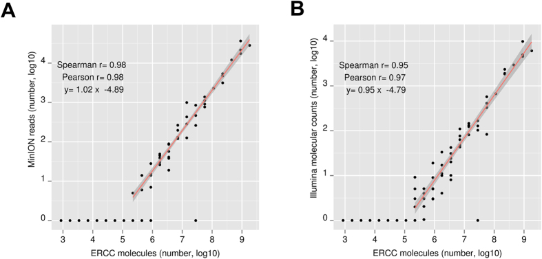Estimation of the ERCC cDNA abundance with the ONT MinION platform. We compared the ERCC cDNA abundance estimated from the ONT MinION ( A ) and the Illumina HiSeq 2500 or MiSeq platforms ( B ) against the expected number of RNA molecules as provided from the manufacturer (Ambion). The template reads from the ERCC MinION experiments number 1, 2, 3, 4 were pooled together and used for ( A ). Similarly, the corresponding Illumina data were pooled together for ( B ). The Illumina molecular counts data were derived using 5′ molecular tags at the RT step as described in material and methods. The total number of molecules presented on the x-axis corresponds to 3.5 pgs of ERCC RNA. In both axes the log10 transformation of the original count number is used.