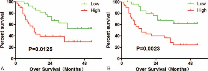 Intratumor IL-17 + cells and MCT + cells predicts poor survival in HCC. (A) High intratumor IL-17 + cells infiltration conferred a significant high risk of death. (B) Patients with high MCT + cell intratumor had significant poorer survival than patients with low MCT + cell. IL-17 = interleukin-17, HCC = hepatocellular carcinoma, MCT + = mast cell tryptase + .