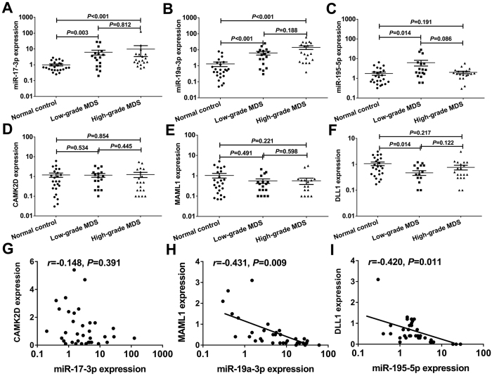 Validation of screened miRNAs and mRNAs using qRT-PCR. The expression of miR-17-3p ( A ) and miR-19a-3p ( B ) were significantly higher in the high-grade and low-grade MDS groups than those in the normal control group (all P