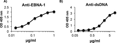 IgG antibody to EBNA‐1 cross‐reacts with dsDNA. IgG MAb, 3D4 binds strongly to EBNA‐1 (A) and cross‐reacts with dsDNA (B) as determined by ELISA. ELISAs are representative of three experiments. ELISA values were obtained in triplicate. Error bars indicate standard deviations of triplicates.